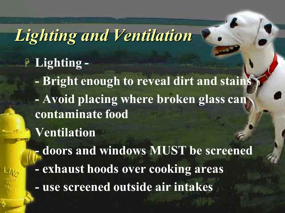 Lighting and Ventilation