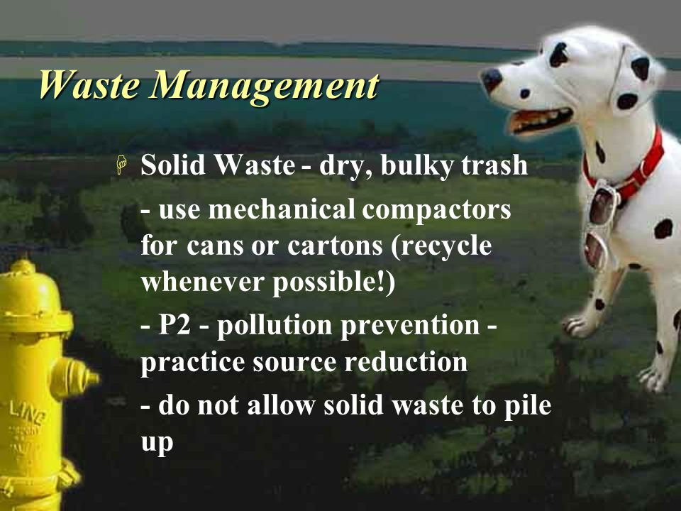 Waste Management Solid Waste - dry, bulky trash