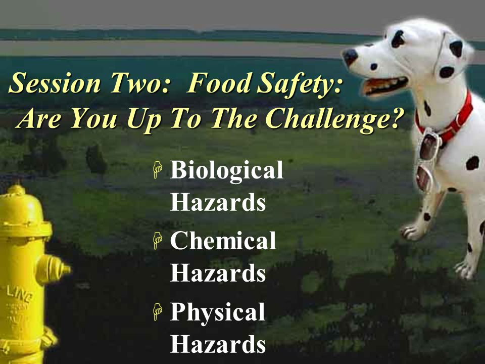 Session Two: Food Safety: Are You Up To The Challenge