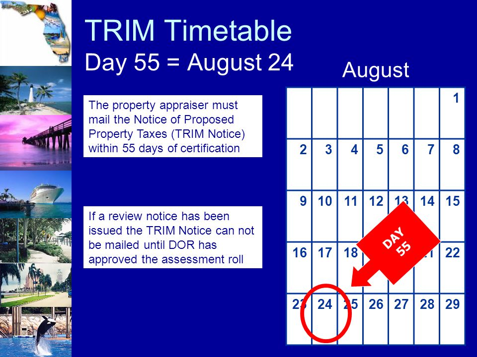 TRIM Timetable Day 55 = August 24