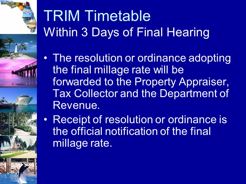 TRIM Timetable Within 3 Days of Final Hearing