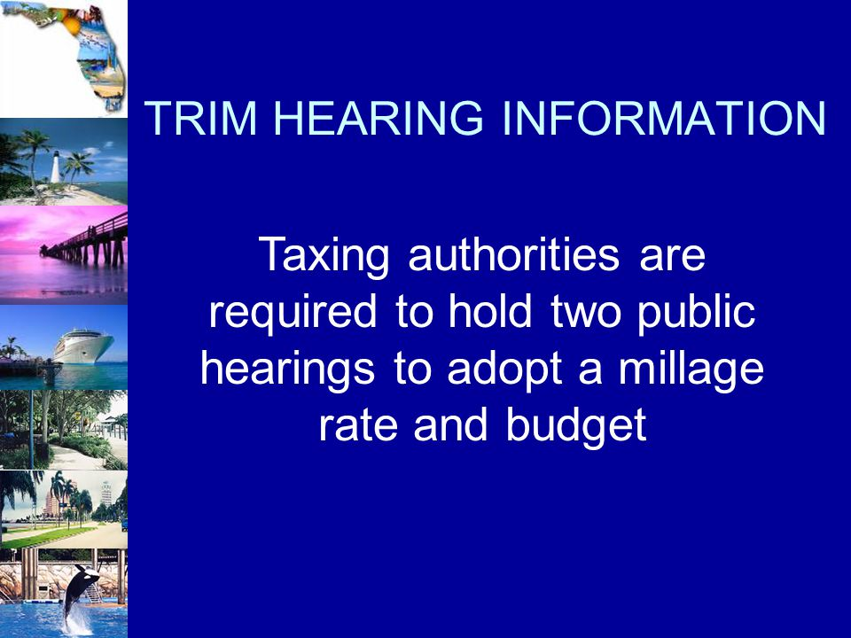 TRIM HEARING INFORMATION