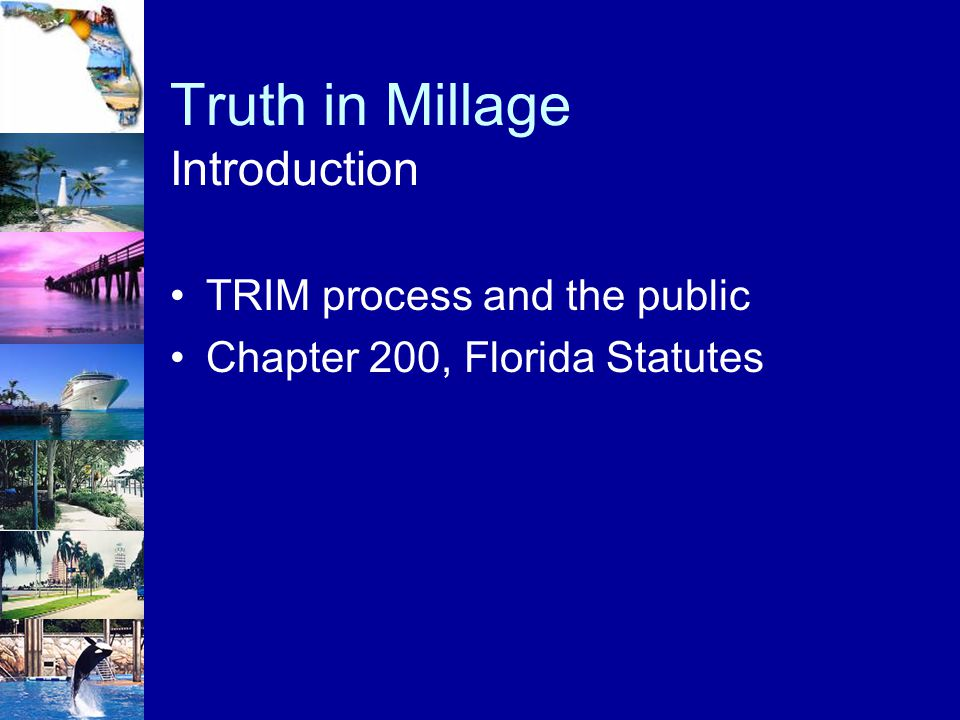 Truth in Millage Introduction