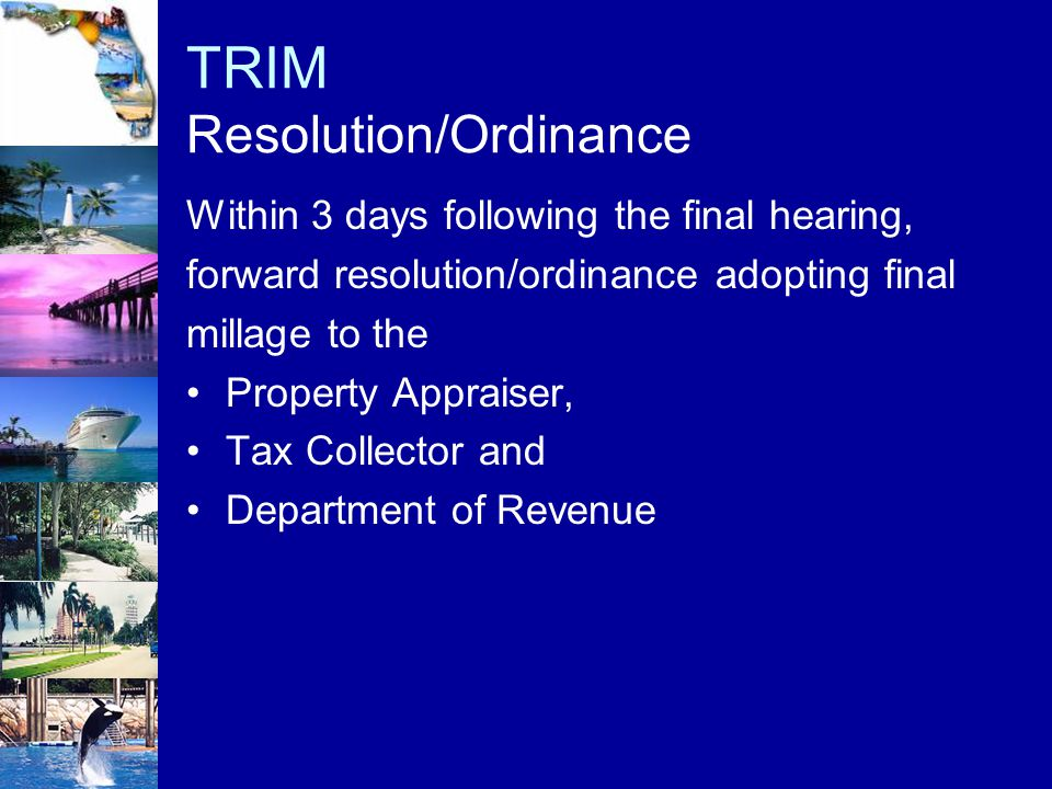 TRIM Resolution/Ordinance