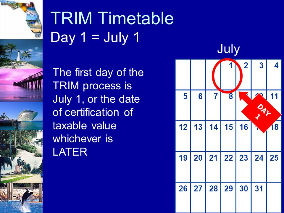 TRIM Timetable Day 1 = July 1
