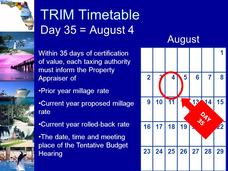 TRIM Timetable Day 35 = August 4