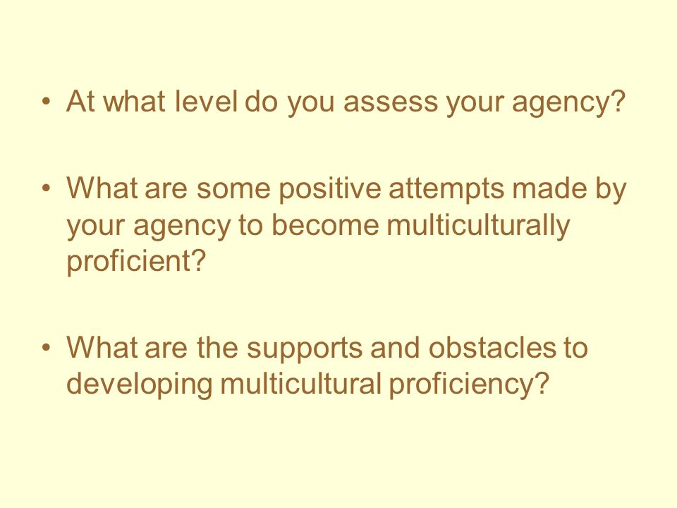 At what level do you assess your agency