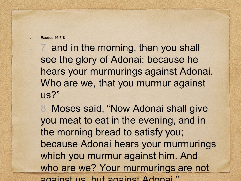 Exodus 16:7-8