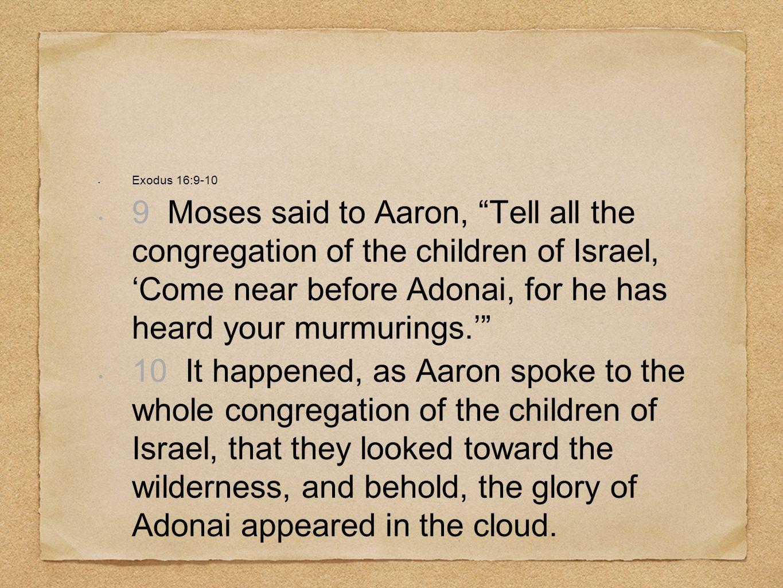 Exodus 16:9-10