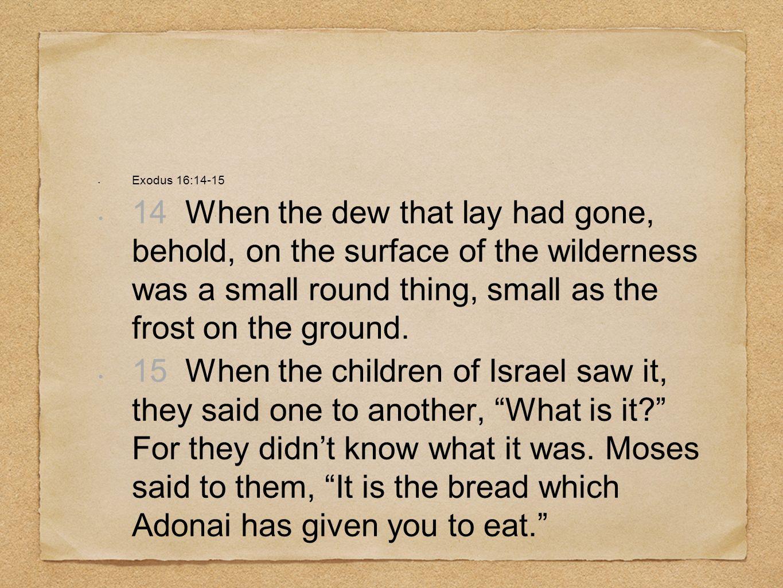 Exodus 16:14-15