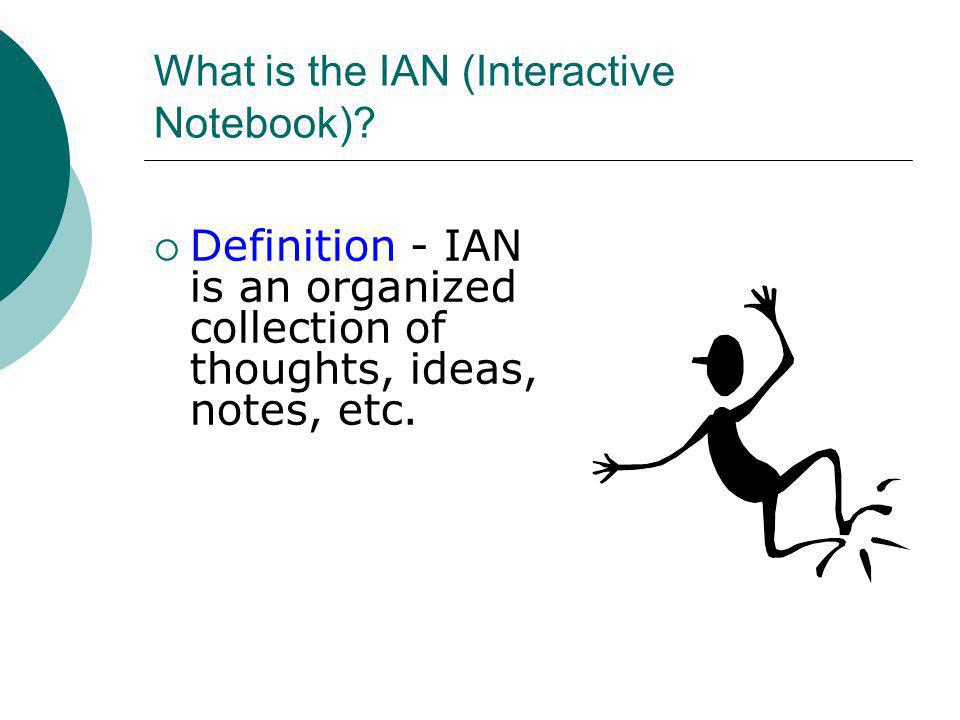 What is the IAN (Interactive Notebook)