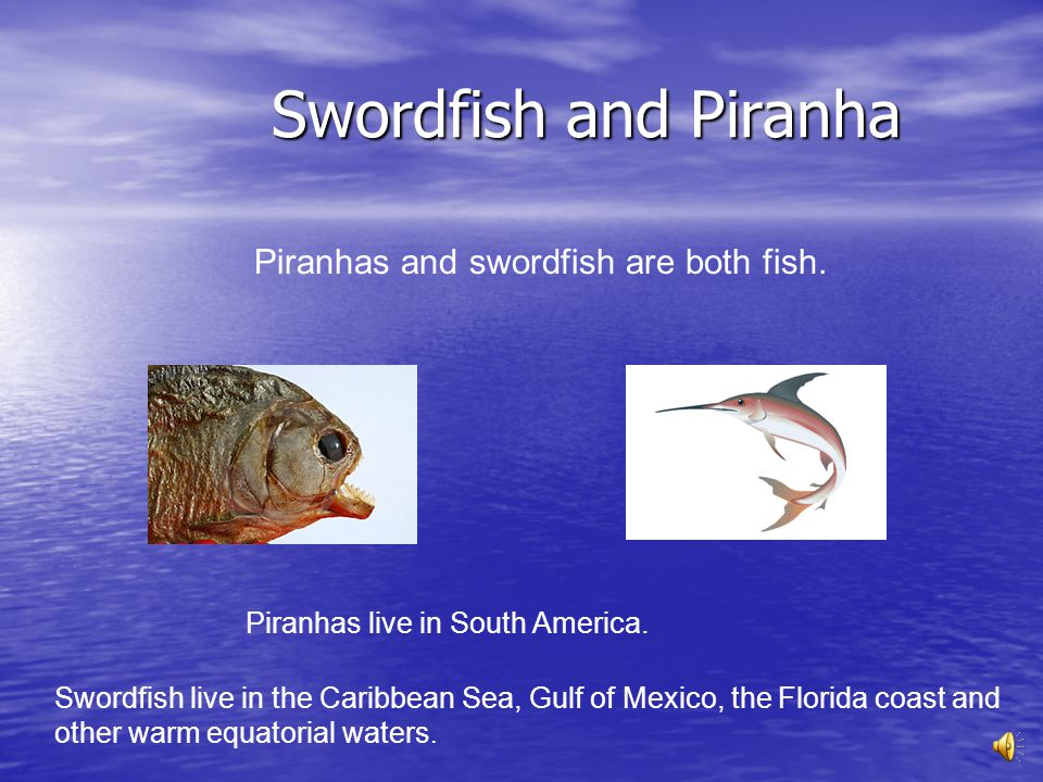 Swordfish and Piranha Piranhas and swordfish are both fish.