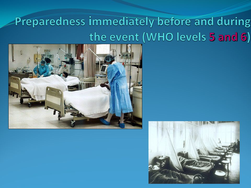 Preparedness immediately before and during the event (WHO levels 5 and 6)