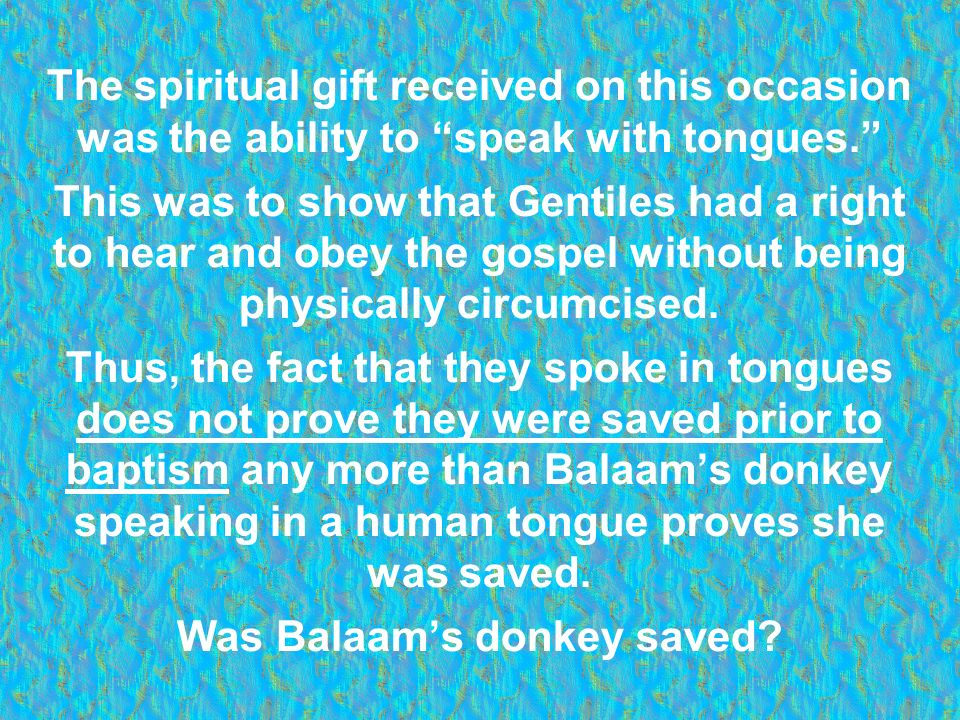 Was Balaam's donkey saved