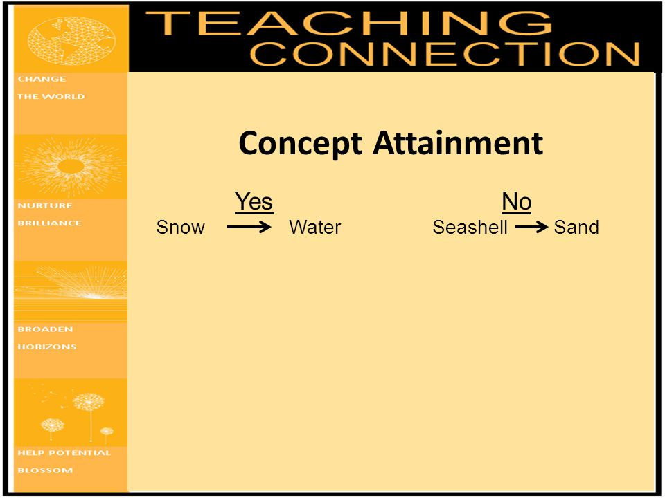 Concept Attainment Yes No Snow Water Seashell Sand