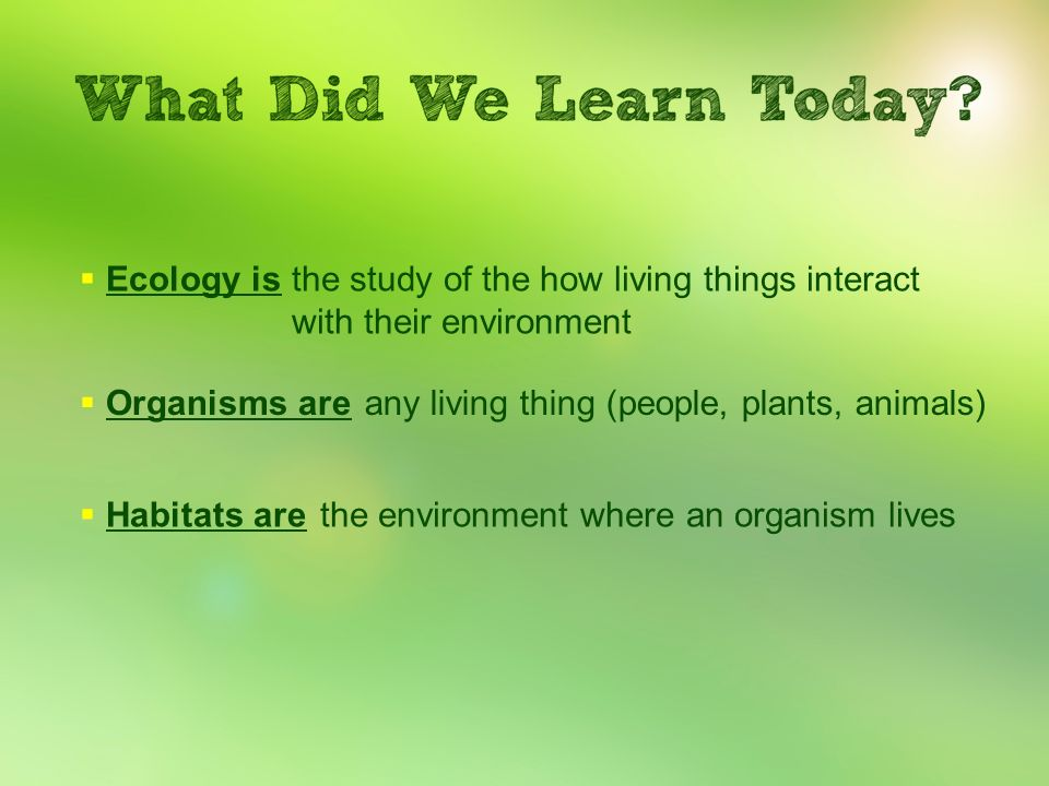 Ecology isthe study of the how living things interact with their environment. Organisms are. any living thing (people, plants, animals)