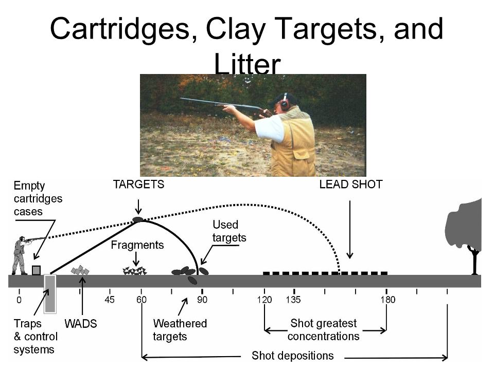 Cartridges, Clay Targets, and Litter