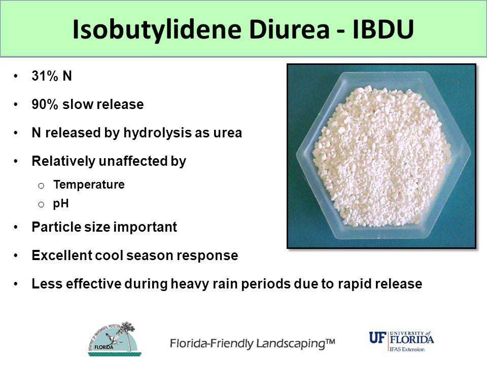 Isobutylidene Diurea - IBDU