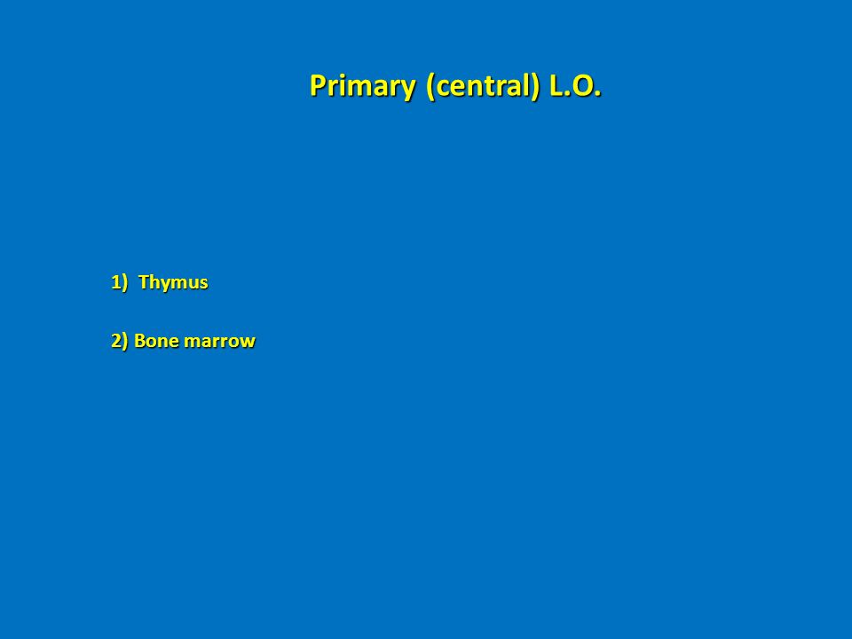 Primary (central) L.O. 1) Thymus 2) Bone marrow