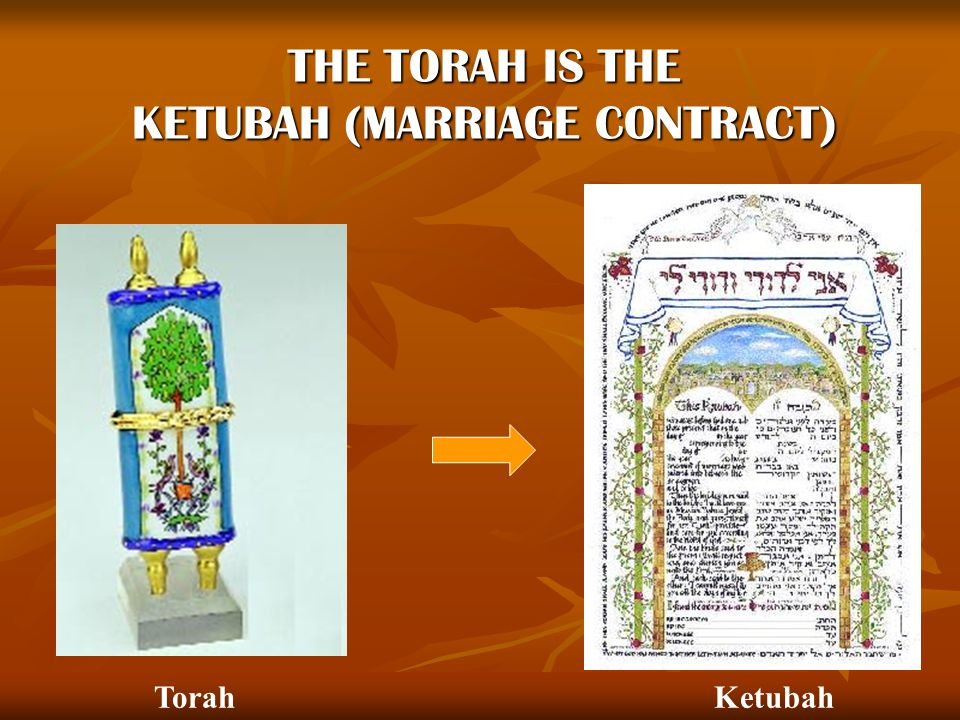 THE TORAH IS THE KETUBAH (MARRIAGE CONTRACT)