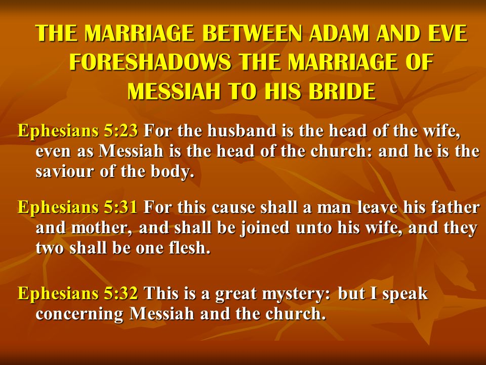 THE MARRIAGE BETWEEN ADAM AND EVE FORESHADOWS THE MARRIAGE OF MESSIAH TO HIS BRIDE