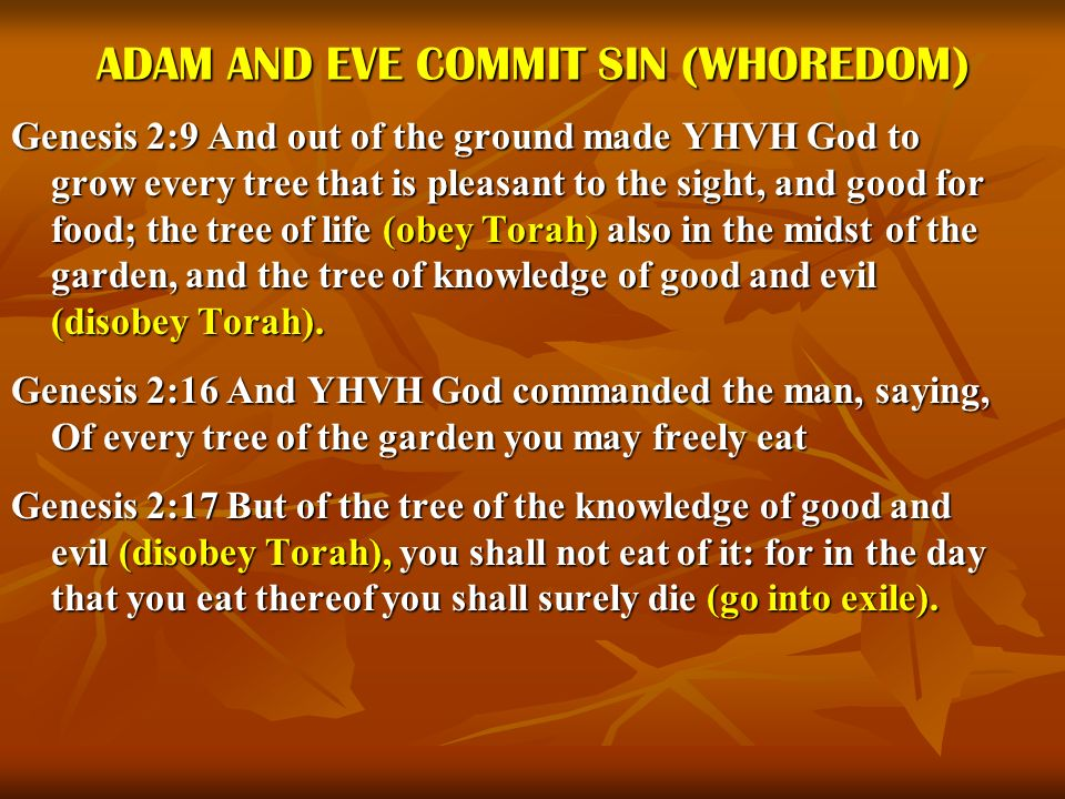 ADAM AND EVE COMMIT SIN (WHOREDOM)