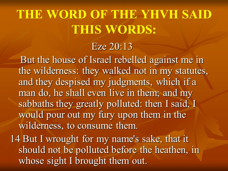 THE WORD OF THE YHVH SAID THIS WORDS: