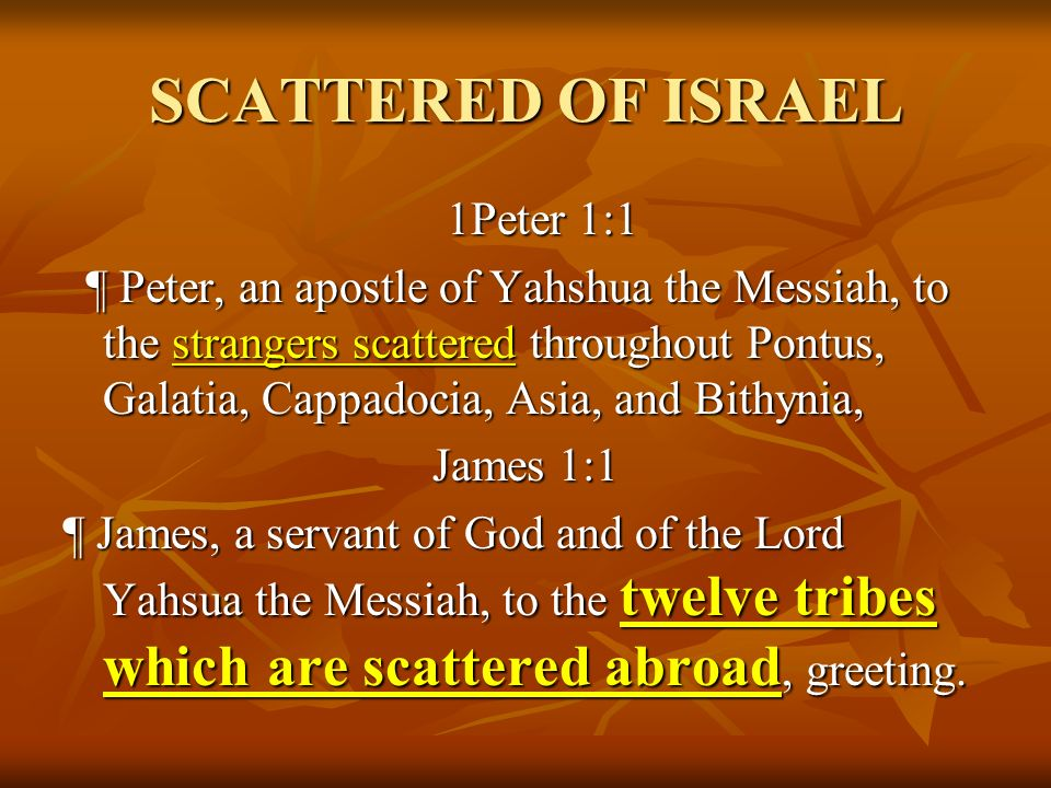 SCATTERED OF ISRAEL 1Peter 1:1