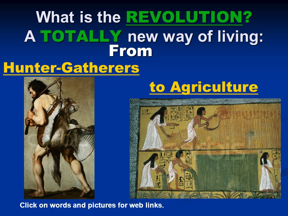What is the REVOLUTION A TOTALLY new way of living: