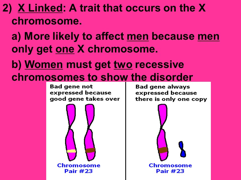2) X Linked: A trait that occurs on the X chromosome.