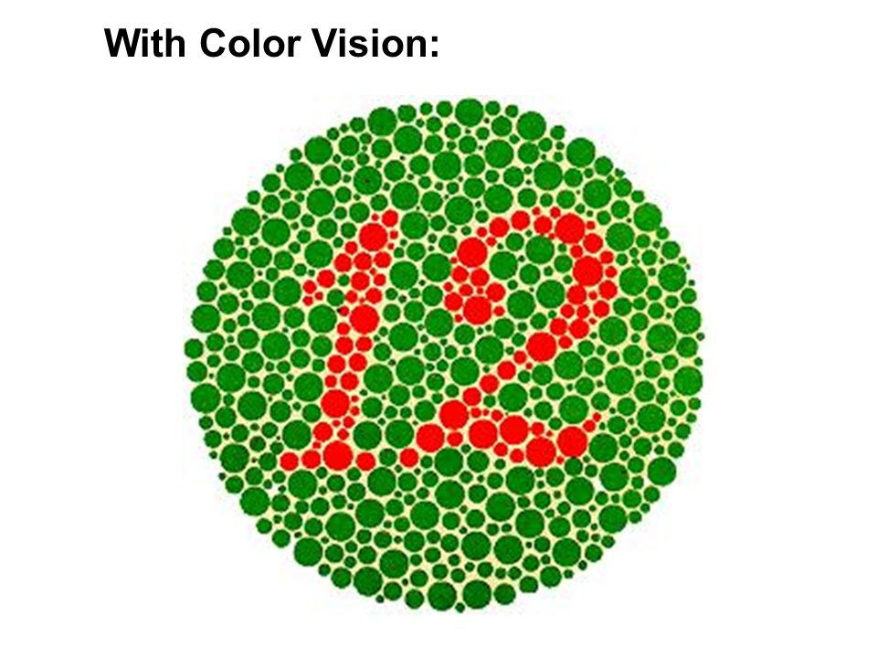 With Color Vision: