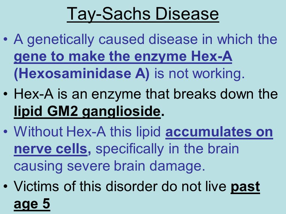 Tay-Sachs Disease A genetically caused disease in which the gene to make the enzyme Hex-A (Hexosaminidase A) is not working.