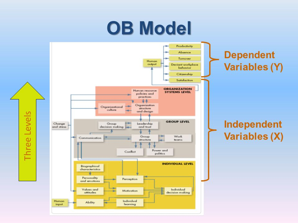 OB Model Dependent Variables (Y) Three Levels