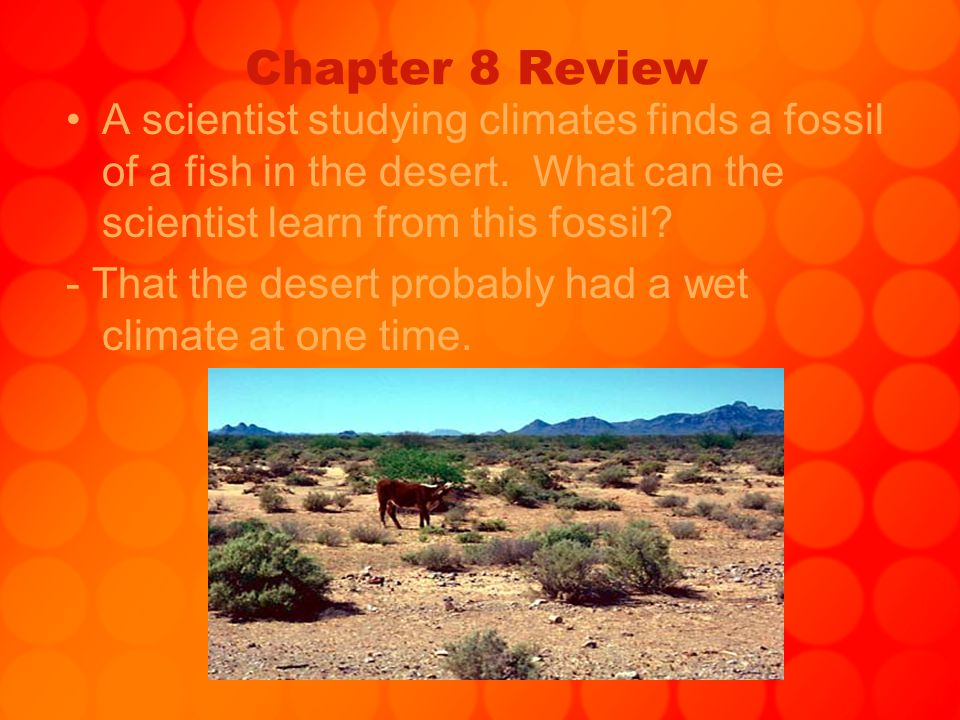 Chapter 8 Review A scientist studying climates finds a fossil of a fish in the desert. What can the scientist learn from this fossil