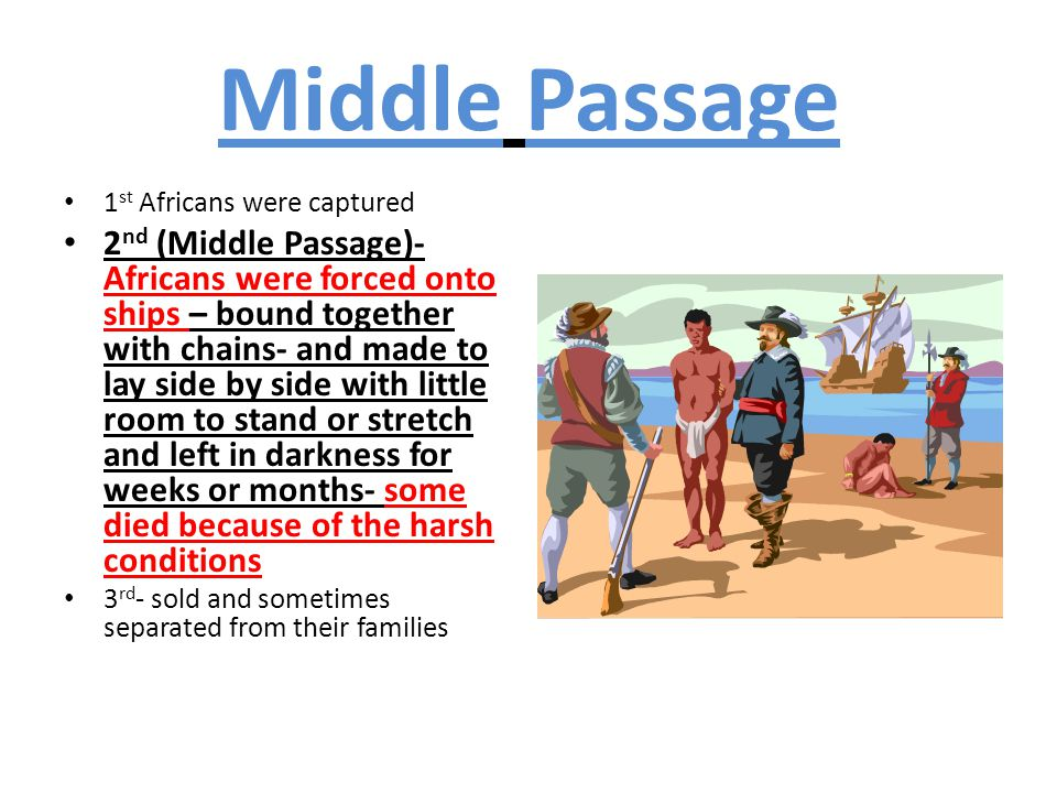 Middle Passage 1st Africans were captured.