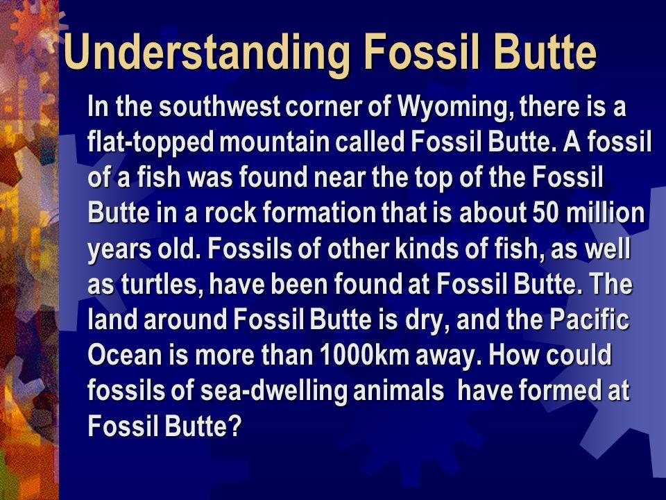 Understanding Fossil Butte
