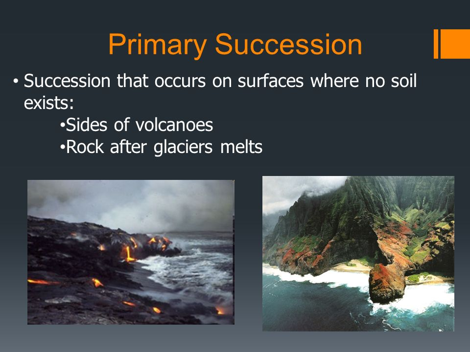 Primary Succession Succession that occurs on surfaces where no soil exists: Sides of volcanoes.