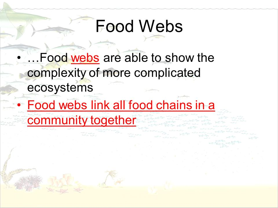 Food Webs …Food webs are able to show the complexity of more complicated ecosystems.