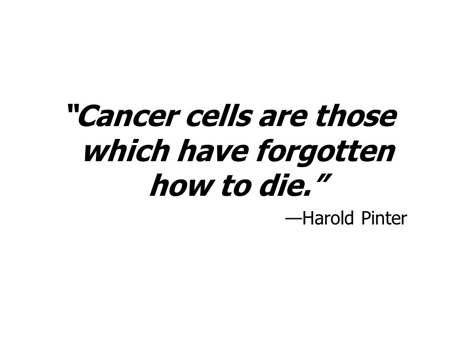 Cancer cells are those which have forgotten how to die.
