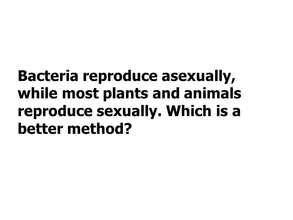 Bacteria reproduce asexually, while most plants and animals reproduce sexually. Which is a better method