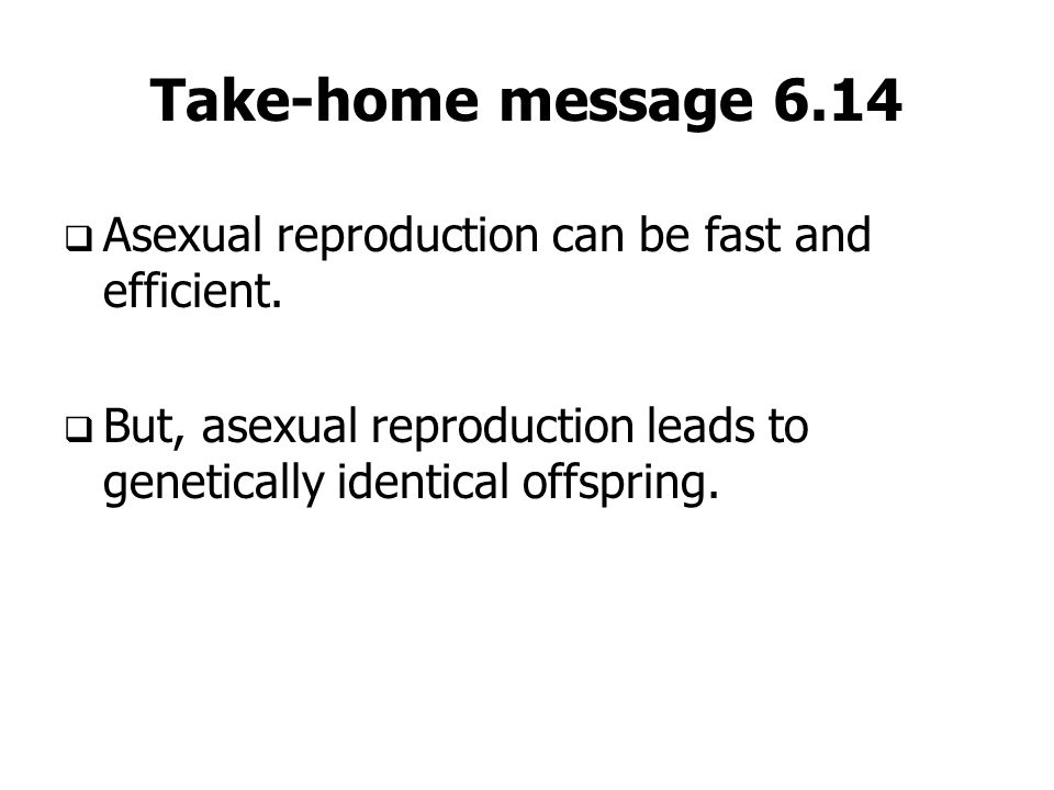 Take-home message 6.14 Asexual reproduction can be fast and efficient.