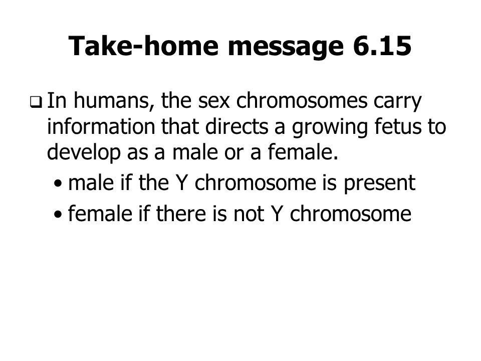 Take-home message 6.15In humans, the sex chromosomes carry information that directs a growing fetus to develop as a male or a female.