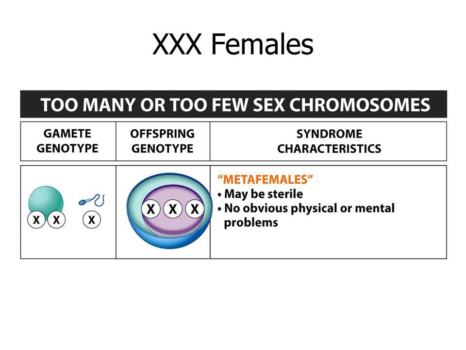 XXX Females XXX females