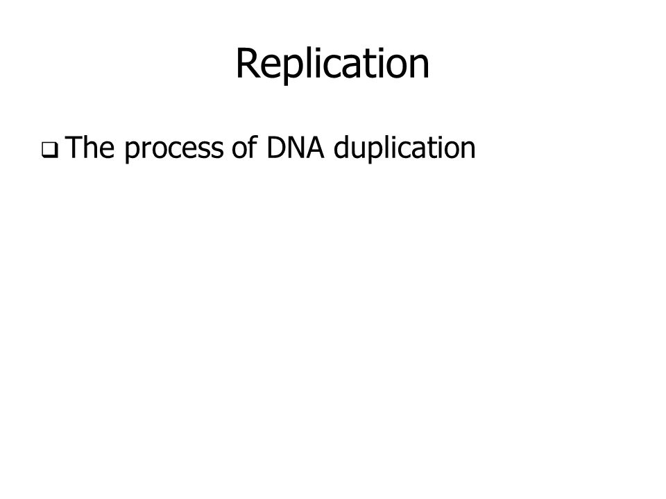 Replication The process of DNA duplication