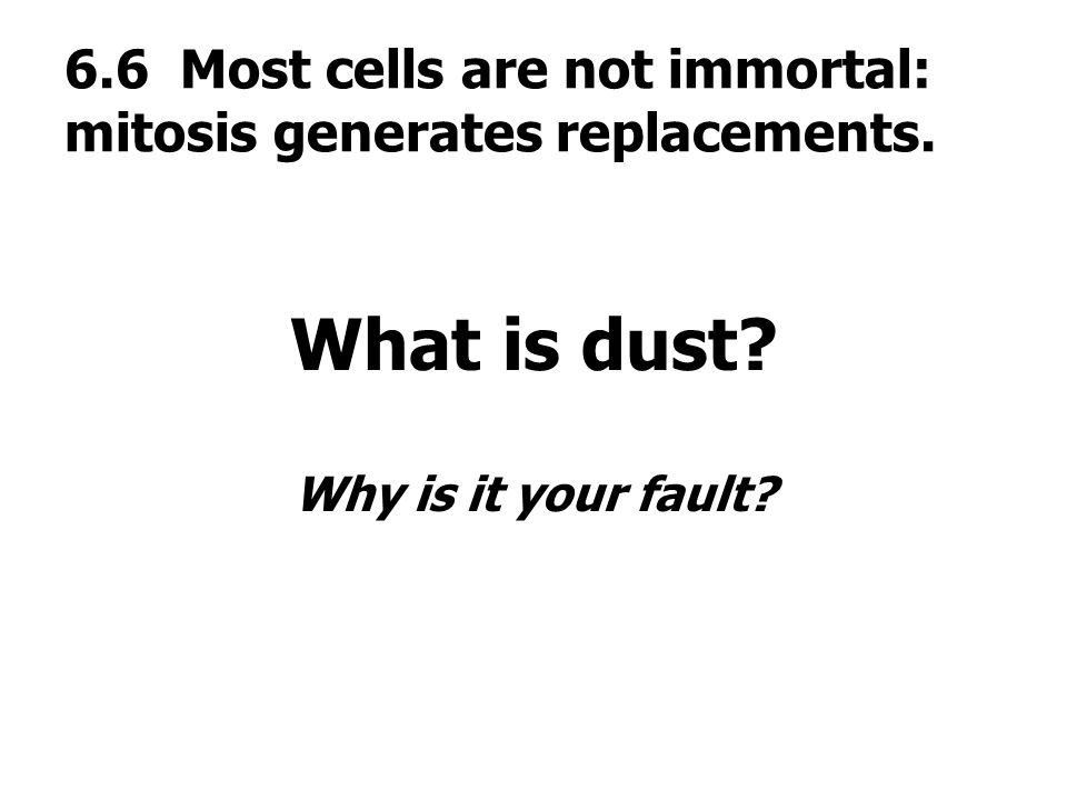 6.6 Most cells are not immortal: mitosis generates replacements.