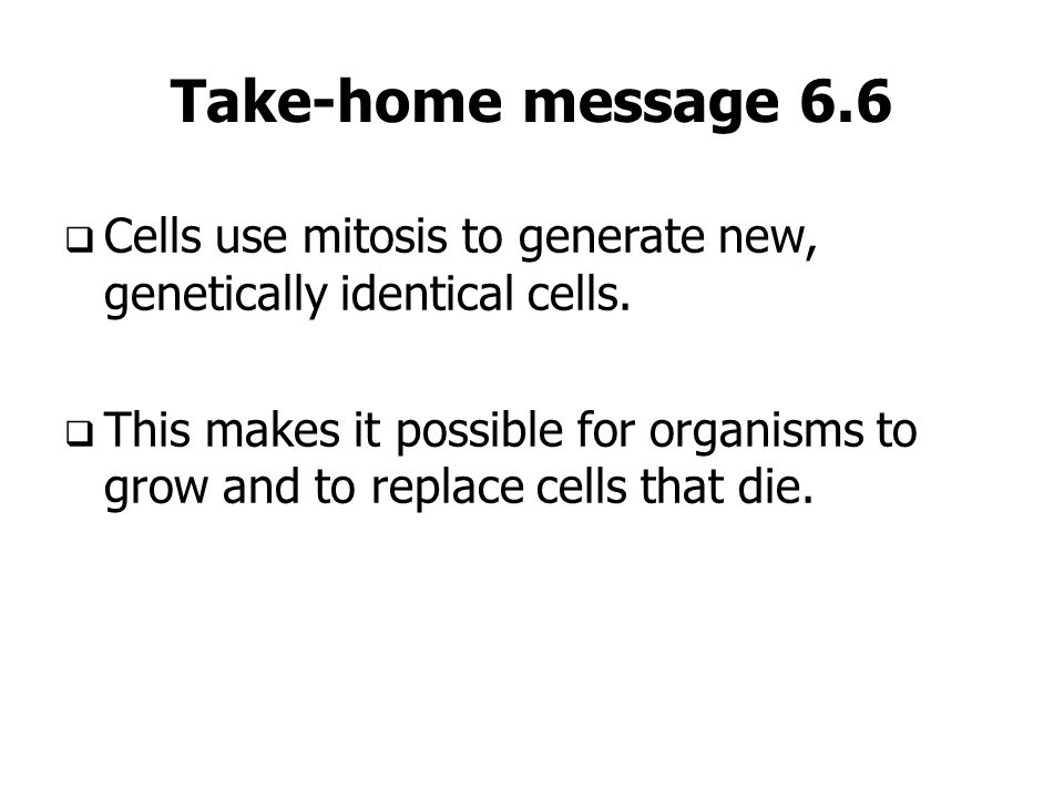 Take-home message 6.6Cells use mitosis to generate new, genetically identical cells.