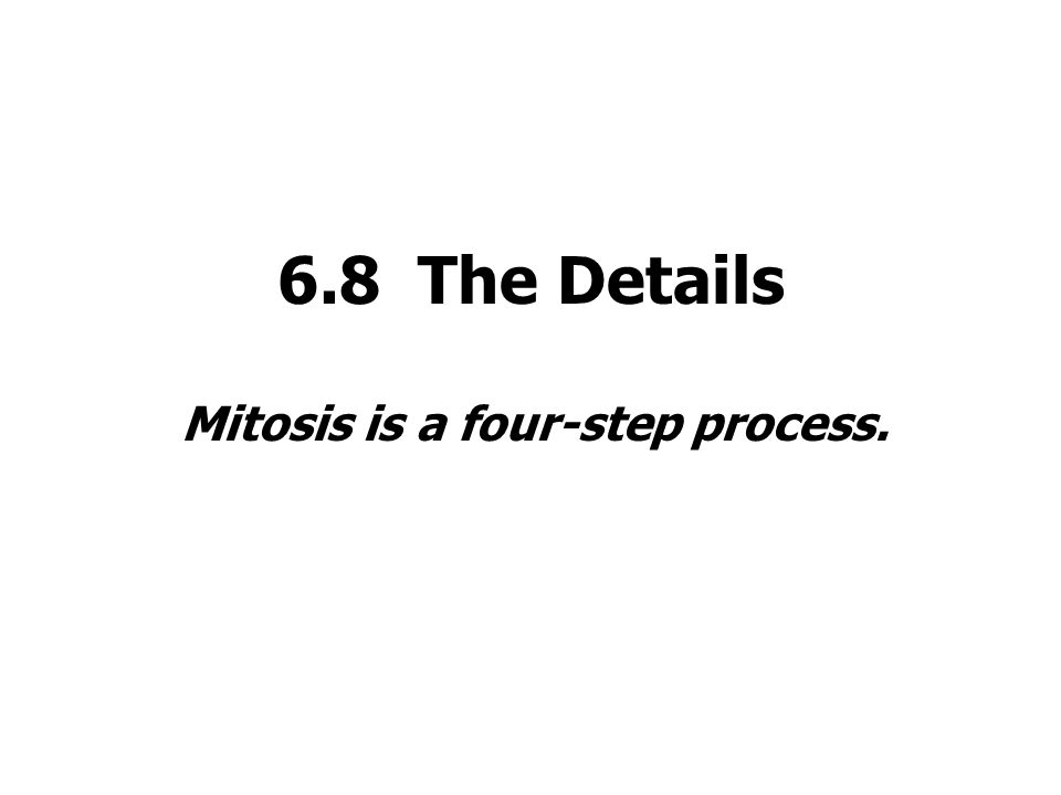 Mitosis is a four-step process.