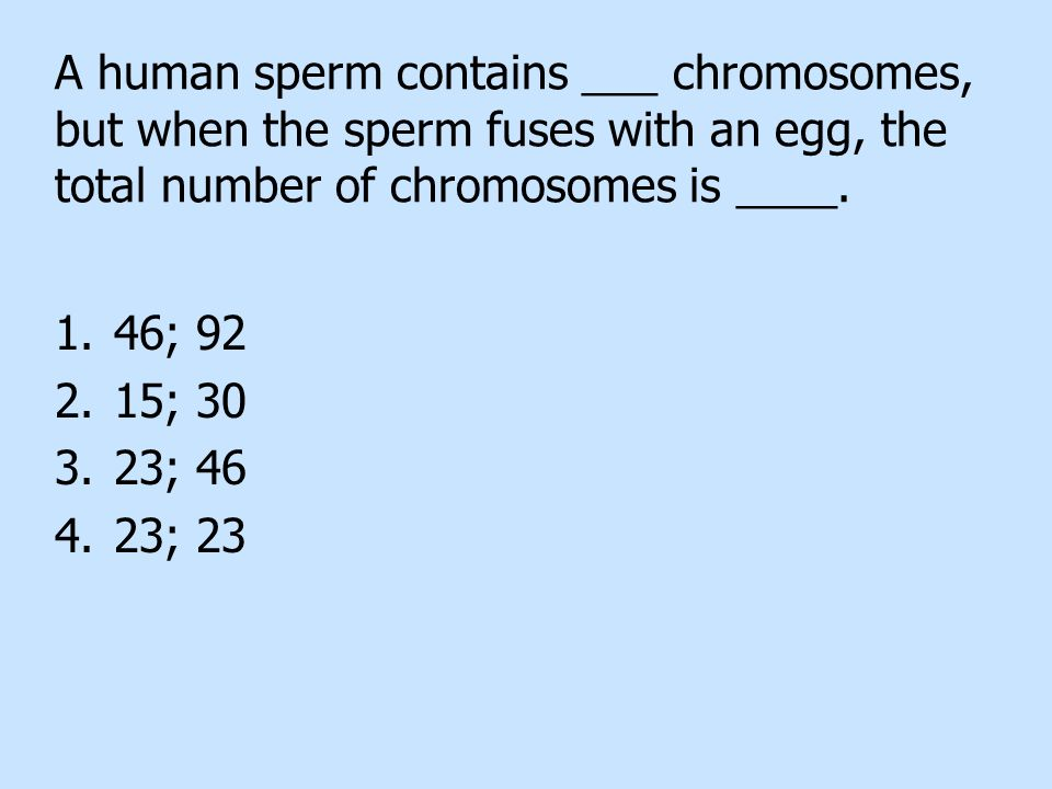 A human sperm contains ___ chromosomes, but when the sperm fuses with an egg, the total number of chromosomes is ____.