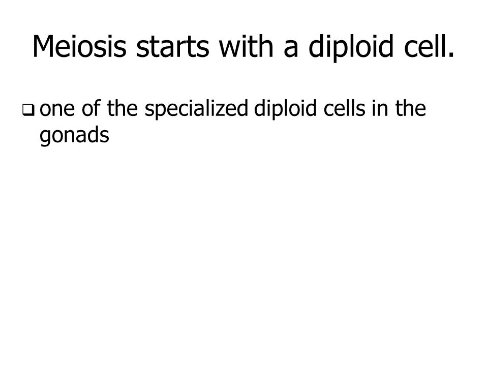 Meiosis starts with a diploid cell.
