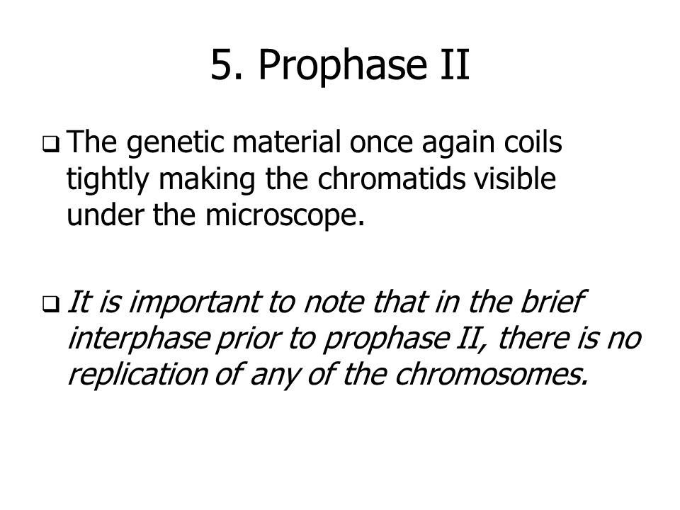 5. Prophase IIThe genetic material once again coils tightly making the chromatids visible under the microscope.